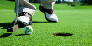 Organic Fertiliser Golf Courses