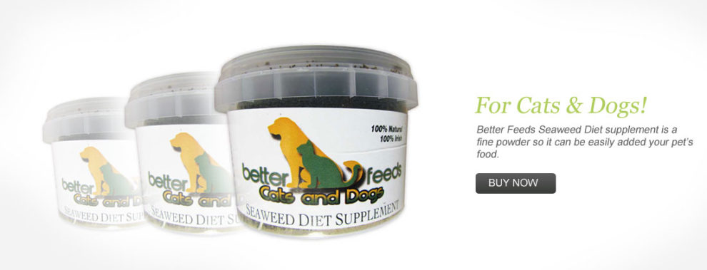 Organic Pet Supplements